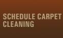Schedule Carpet Cleaning
